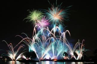 TGIF Fireworks2