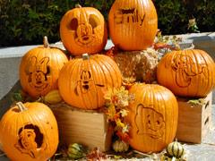 TGIF FIsney Pumpkins