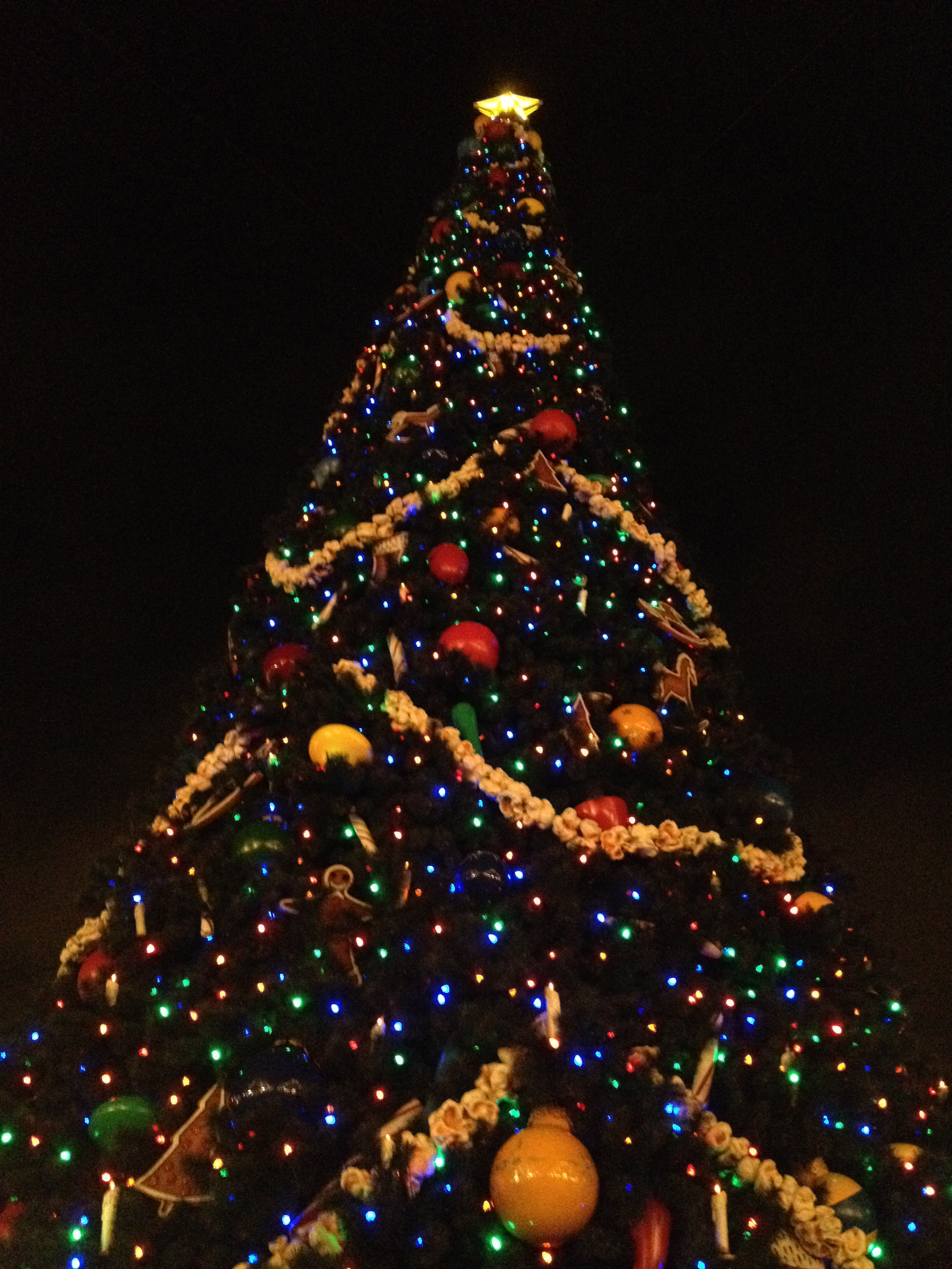 Uncategorized christmas decorations amp holiday decorations - Huge Beautifully Decorated Trees At Every Park And Resort
